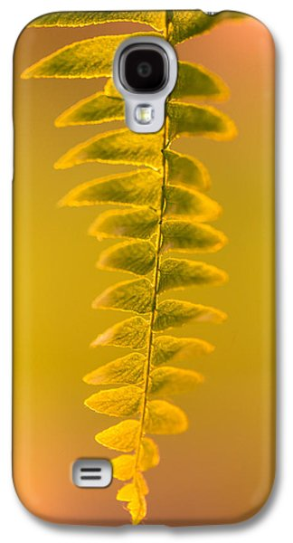 Ferns Galaxy S4 Cases - Golden Fern Galaxy S4 Case by Shane Holsclaw
