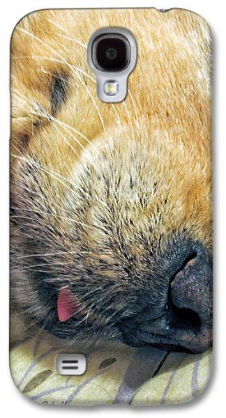 Sleeping Dog Galaxy S4 Cases - Golden Retriever Dog Little Tongue Galaxy S4 Case by Jennie Marie Schell