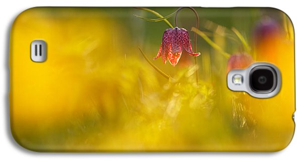 Meleagris Galaxy S4 Cases - Golden Sundown Galaxy S4 Case by Roeselien Raimond