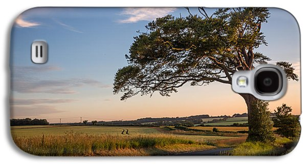 Lone Tree Galaxy S4 Cases - Good looking tree Galaxy S4 Case by Ian Hufton