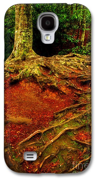 Tree Roots Galaxy S4 Cases - Grab On And Dont Let Go Galaxy S4 Case by Michael Eingle