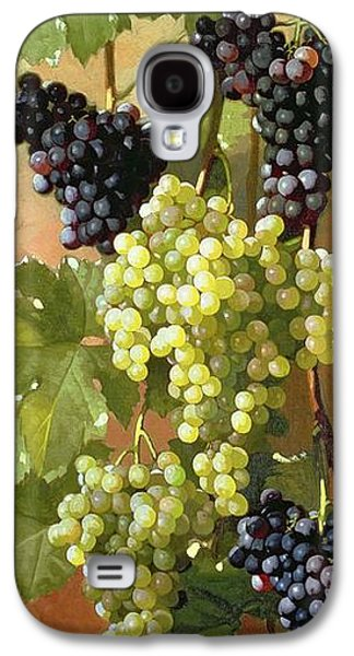 Grapes Galaxy S4 Case by Edward Chalmers Leavitt