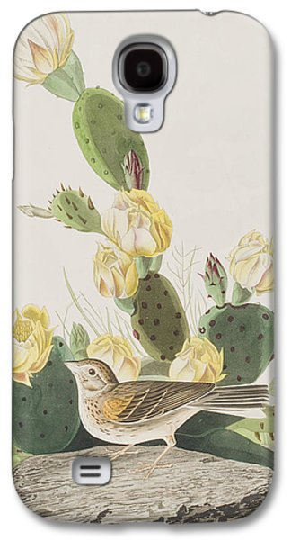 Grass Finch Or Bay Winged Bunting Galaxy S4 Case by John James Audubon