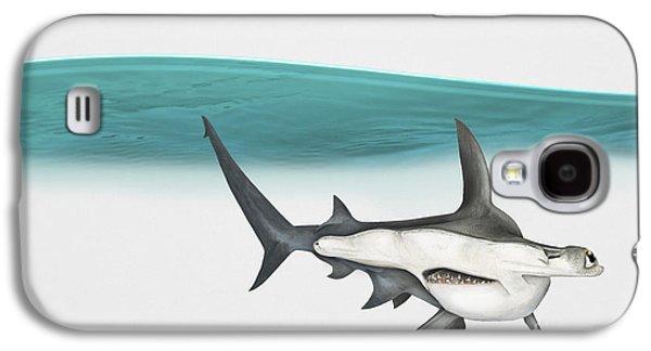 Nature Study Drawings Galaxy S4 Cases - Great Hammerhead Sphyrna mokarran - Squat-headed Hammerhead Shark - Grand Requin-marteau - Cornuda Galaxy S4 Case by Urft Valley Art