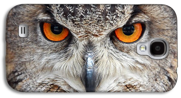 Great Birds Galaxy S4 Cases - Great horned Owl Galaxy S4 Case by Pierre Leclerc Photography
