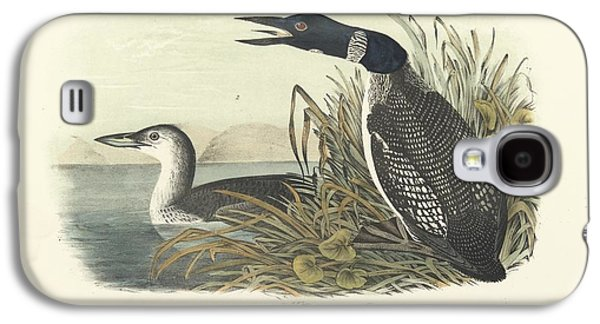 Loon Galaxy S4 Cases - Great North Diver Loon Galaxy S4 Case by John James Audubon