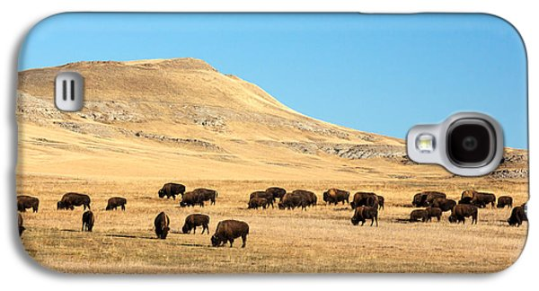 Great Plains Buffalo Galaxy S4 Case by Todd Klassy