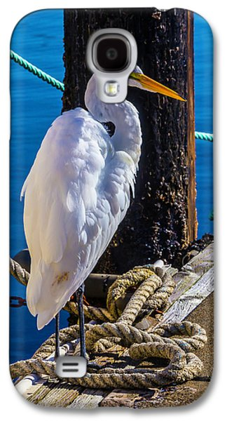 Great White Heron On Boat Dock Galaxy S4 Case by Garry Gay