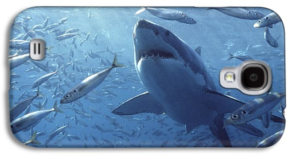 Animals and Earth - Galaxy S4 Cases - Great White Shark Carcharodon Galaxy S4 Case by Mike Parry