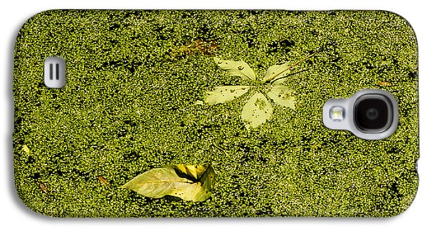 Drawing Galaxy S4 Cases - Green Algae Galaxy S4 Case by Phil Welsher