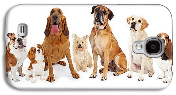 Studio Photographs Galaxy S4 Cases - Group of Various Size Dogs Galaxy S4 Case by Susan  Schmitz