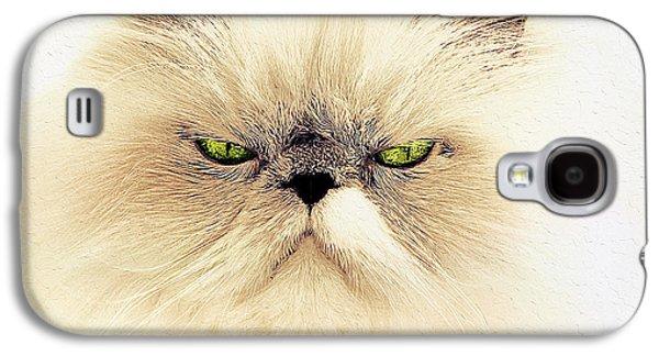 Digital Galaxy S4 Cases - Grumpy White cat Galaxy S4 Case by Queso Espinosa