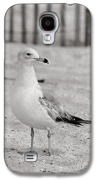 Land Sea And Sky Series Gull Galaxy S4 Case by Angela Rath