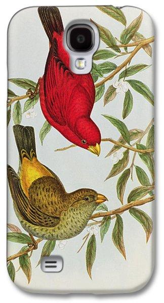 Haematospiza Sipahi Galaxy S4 Case by John Gould
