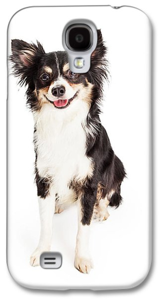 Studio Photographs Galaxy S4 Cases - Happy Chihuahua Mixed Breed Dog Sitting Galaxy S4 Case by Susan  Schmitz