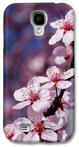 Becky Photographs Galaxy S4 Cases - #happyfirstdayofspring Galaxy S4 Case by Becky Furgason