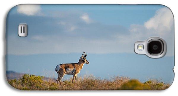 Hart Mountain Antelope Galaxy S4 Case by Leland D Howard