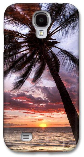 Amazing Sunset Galaxy S4 Cases - Hawaiian Coconut Palm Sunset Galaxy S4 Case by Dustin K Ryan