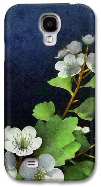 Hawthorne Painted Galaxy S4 Case by Cynthia Decker