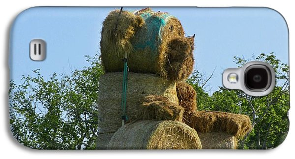 Haybale Sculptures Galaxy S4 Cases - Hay Bale Teddy Bear Galaxy S4 Case by John Malone