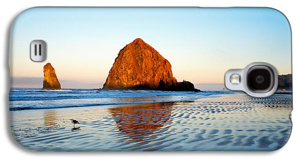 Reflections In Water Galaxy S4 Cases - Haystack Rock Galaxy S4 Case by Panoramic Images