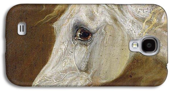 Head Of A Grey Arabian Horse  Galaxy S4 Case by Martin Theodore Ward