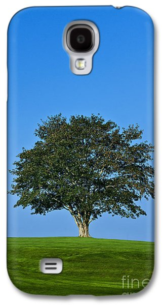 Business Galaxy S4 Cases - Healthy Tree Galaxy S4 Case by John Greim