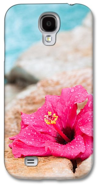 Hibiscus Galaxy S4 Cases - Hibiscus Flower Galaxy S4 Case by Amanda And Christopher Elwell