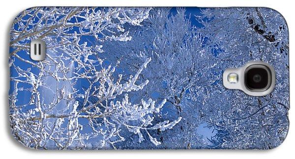 Idaho Photographs Galaxy S4 Cases - Hoarfrost Galaxy S4 Case by Leland D Howard