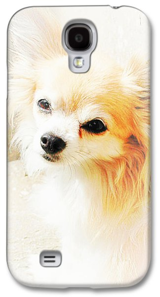Puppies Digital Art Galaxy S4 Cases - Hols Galaxy S4 Case by Dorothy Berry-Lound