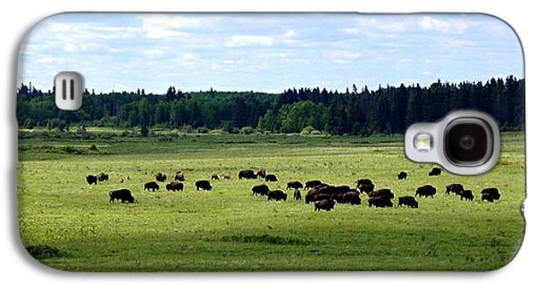 Bison Digital Art Galaxy S4 Cases - Home on the Range Galaxy S4 Case by David and Lynn Keller