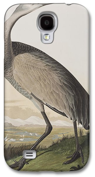 Hoop Galaxy S4 Cases - Hooping Crane Galaxy S4 Case by John James Audubon