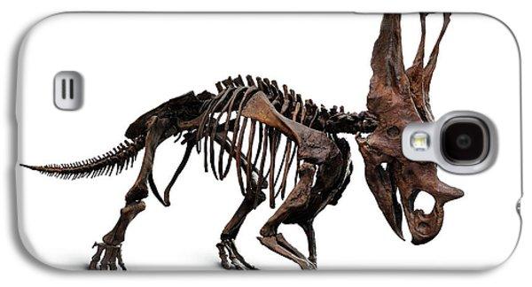 Horned Dinosaur Skeleton Galaxy S4 Case by Oleksiy Maksymenko
