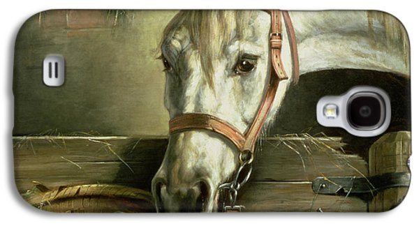 Kitten Galaxy S4 Cases - Horse and kittens Galaxy S4 Case by Moritz Muller