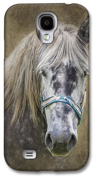 Horse Portrait I Galaxy S4 Case by Tom Mc Nemar