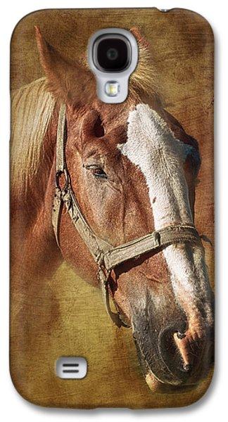 Horse Portrait II Galaxy S4 Case by Tom Mc Nemar