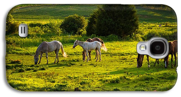 Landscape Acrylic Prints Galaxy S4 Cases - Horses Grazing in Evening Light Galaxy S4 Case by Lori Coleman
