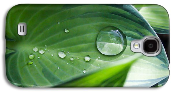 Sun Galaxy S4 Cases - Hosta With Raindrops and Sunlight 1 Galaxy S4 Case by Mo Barton