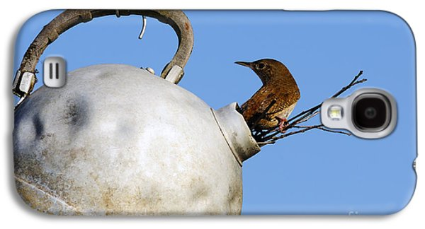 Makeshift Galaxy S4 Cases - House Wren in New Home Galaxy S4 Case by Thomas R Fletcher