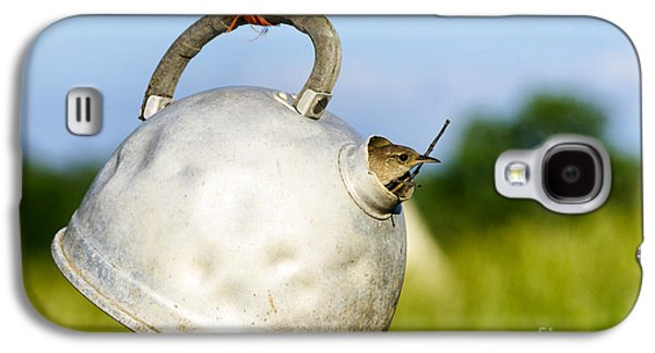Makeshift Galaxy S4 Cases - House wren in Tea Kettle Home Galaxy S4 Case by Thomas R Fletcher