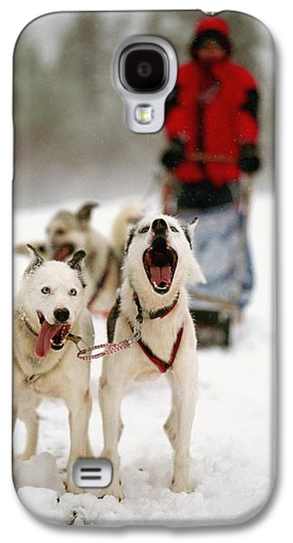 Sledding Galaxy S4 Cases - Husky Dog Racing Galaxy S4 Case by Axiom Photographic
