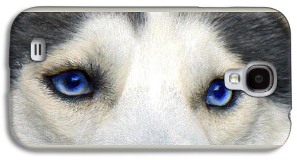 Husky Galaxy S4 Cases - Husky Eyes Galaxy S4 Case by Jane Schnetlage