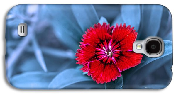 Botanical Galaxy S4 Cases - I Am Red Galaxy S4 Case by Charuhas Images