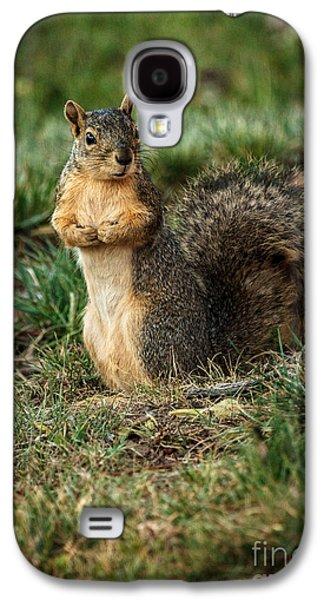 Fox Squirrel Galaxy S4 Cases - I Am So Cute Galaxy S4 Case by Robert Bales