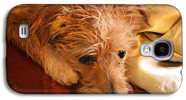Dogs Digital Galaxy S4 Cases - I Gots To Play Galaxy S4 Case by Wendy Martinez