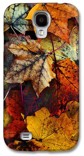 Fall Colors Galaxy S4 Cases - I Love Fall 2 Galaxy S4 Case by Joanne Coyle
