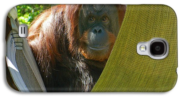 I Love My Hammock Galaxy S4 Case by Emmy Marie Vickers