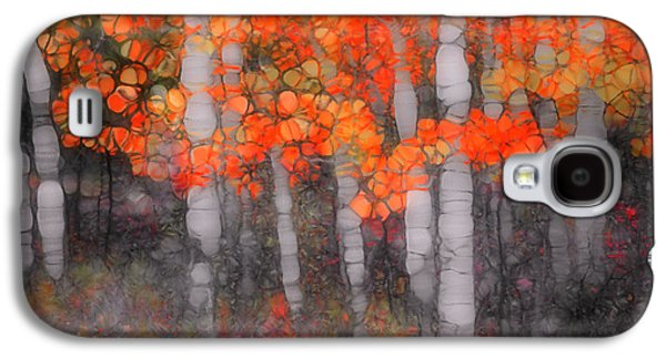 Nature Abstracts Galaxy S4 Cases - I Love You in Orange Galaxy S4 Case by Tara Turner