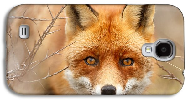 Frontal Galaxy S4 Cases - I See You - Red Fox Spotting Me Galaxy S4 Case by Roeselien Raimond