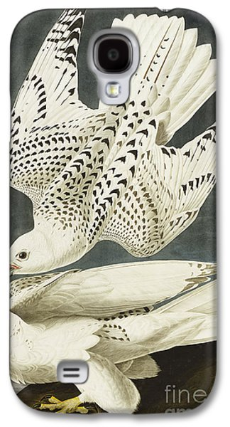 Iceland Or Jer Falcon Galaxy S4 Case by John James Audubon